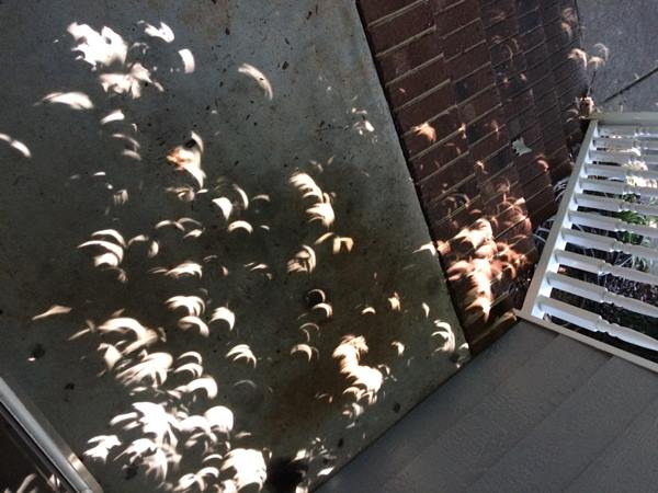 "<div class=""meta image-caption""><div class=""origin-logo origin-image none""><span>none</span></div><span class=""caption-text"">Eclipse shadow on stairs (Credit: Julia P)</span></div>"