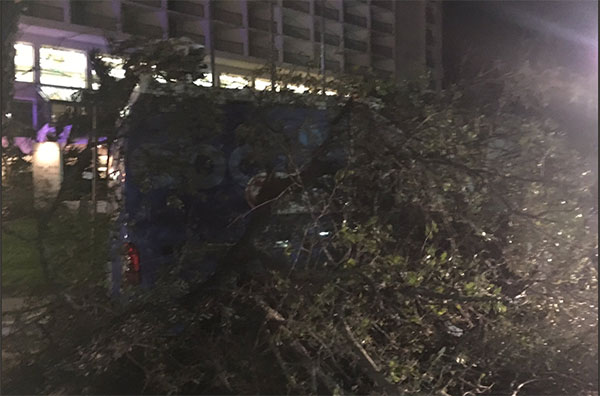 "<div class=""meta image-caption""><div class=""origin-logo origin-image none""><span>none</span></div><span class=""caption-text"">A KIII news truck is blocked by a tree in Corpus Christi, Texas (Briana Whitney of ABC affiliate KIII)</span></div>"