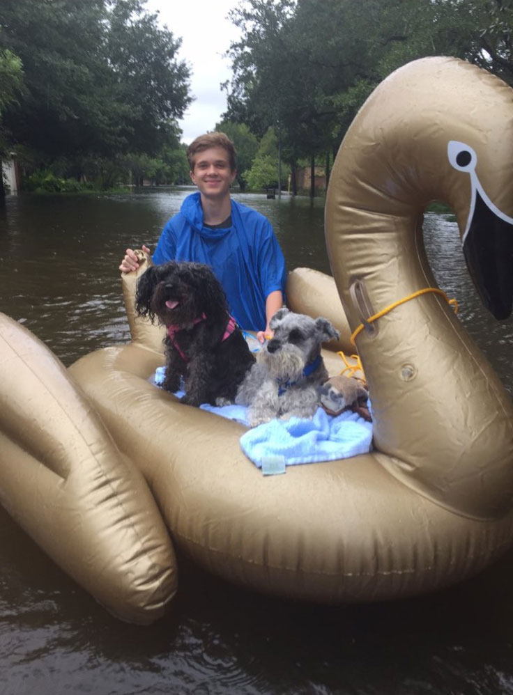 <div class='meta'><div class='origin-logo' data-origin='none'></div><span class='caption-text' data-credit='Mia Rensburg/Twitter'>Vian Janse van Rensburg and his family in Katy, Texas, got their dogs to safety using what they had, an inflatable swan.</span></div>