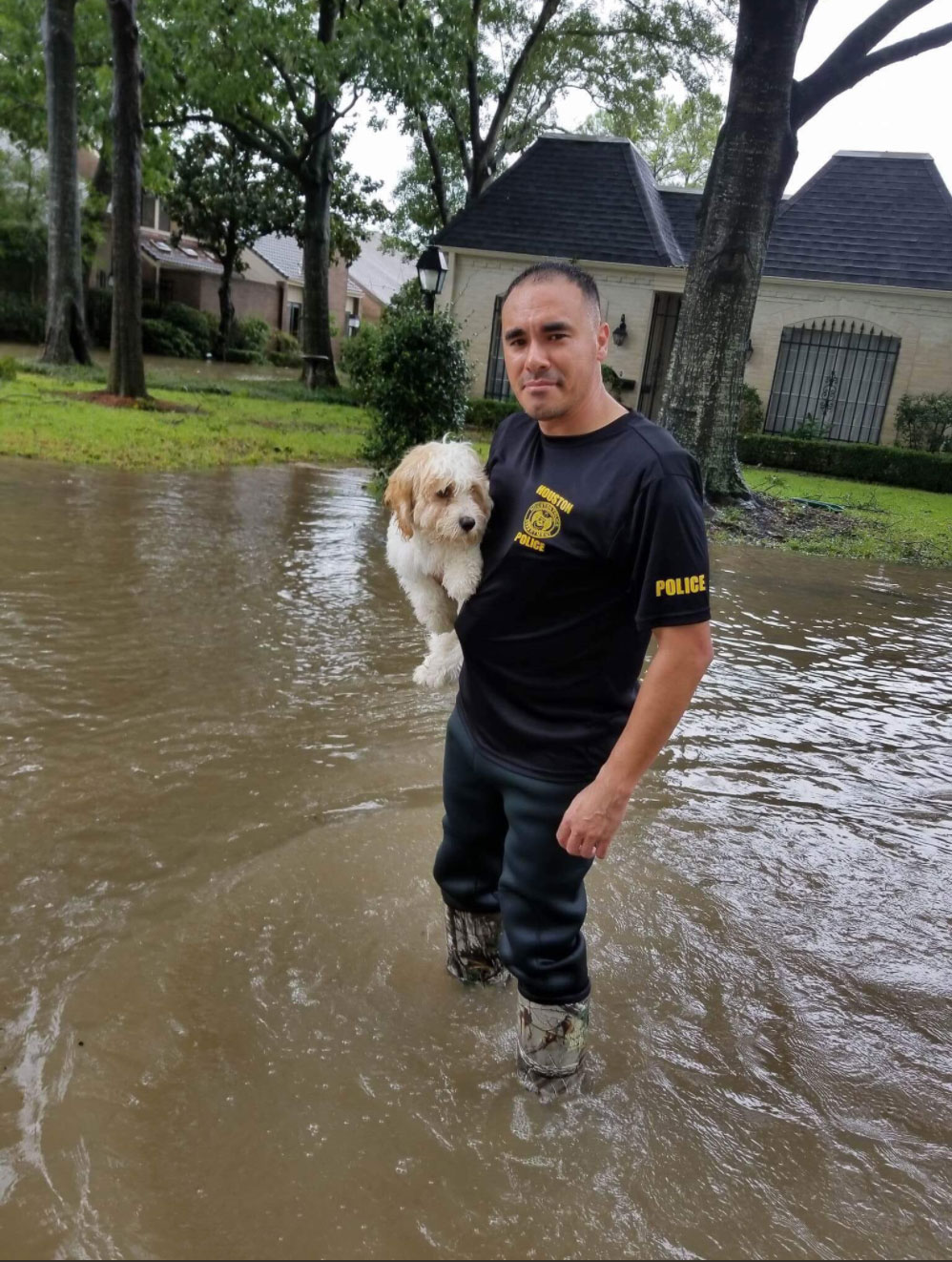 <div class='meta'><div class='origin-logo' data-origin='none'></div><span class='caption-text' data-credit='houstonpolice/Twitter'>The Houston Police rescues a dog stranded by the flood.</span></div>