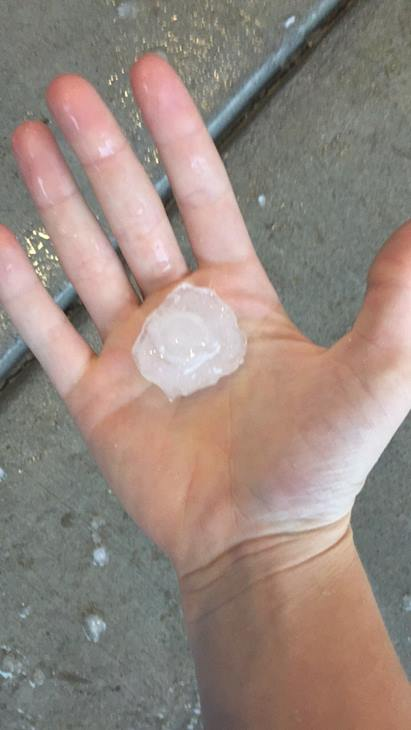 "<div class=""meta image-caption""><div class=""origin-logo origin-image wtvd""><span>WTVD</span></div><span class=""caption-text"">Large hail in Fuquay-Varina. (ABC11 Eyewitness)</span></div>"