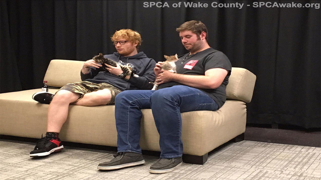 Ed Sheeran is surprised with kittens during at a Raleigh concert.