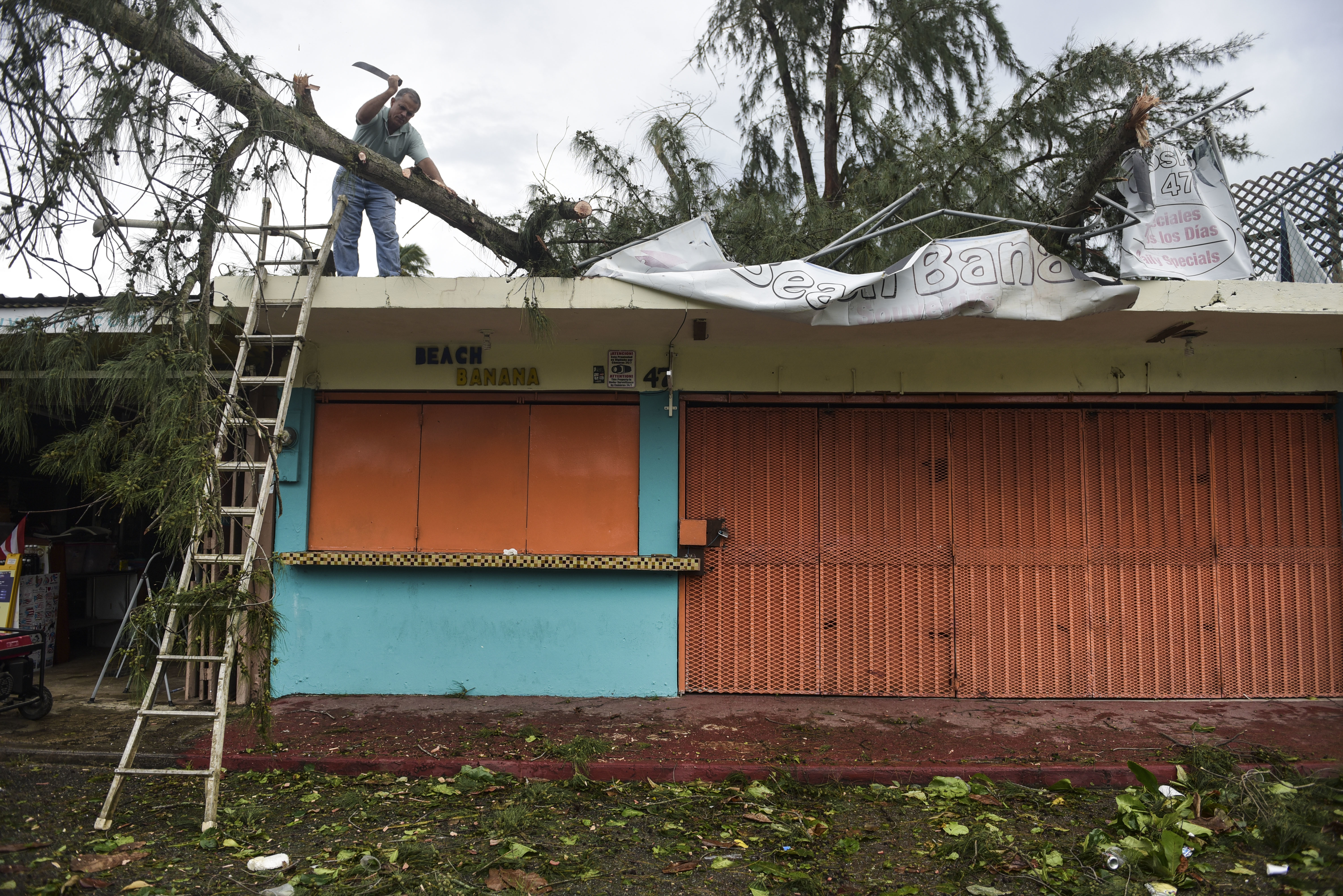 "<div class=""meta image-caption""><div class=""origin-logo origin-image none""><span>none</span></div><span class=""caption-text"">An employee works to remove a felled tree from a rooftop in the aftermath of Hurricane Irma, in Fajardo, Puerto Rico, Thursday, Sept. 7, 2017. (Carlos Giusti/AP Photo)</span></div>"