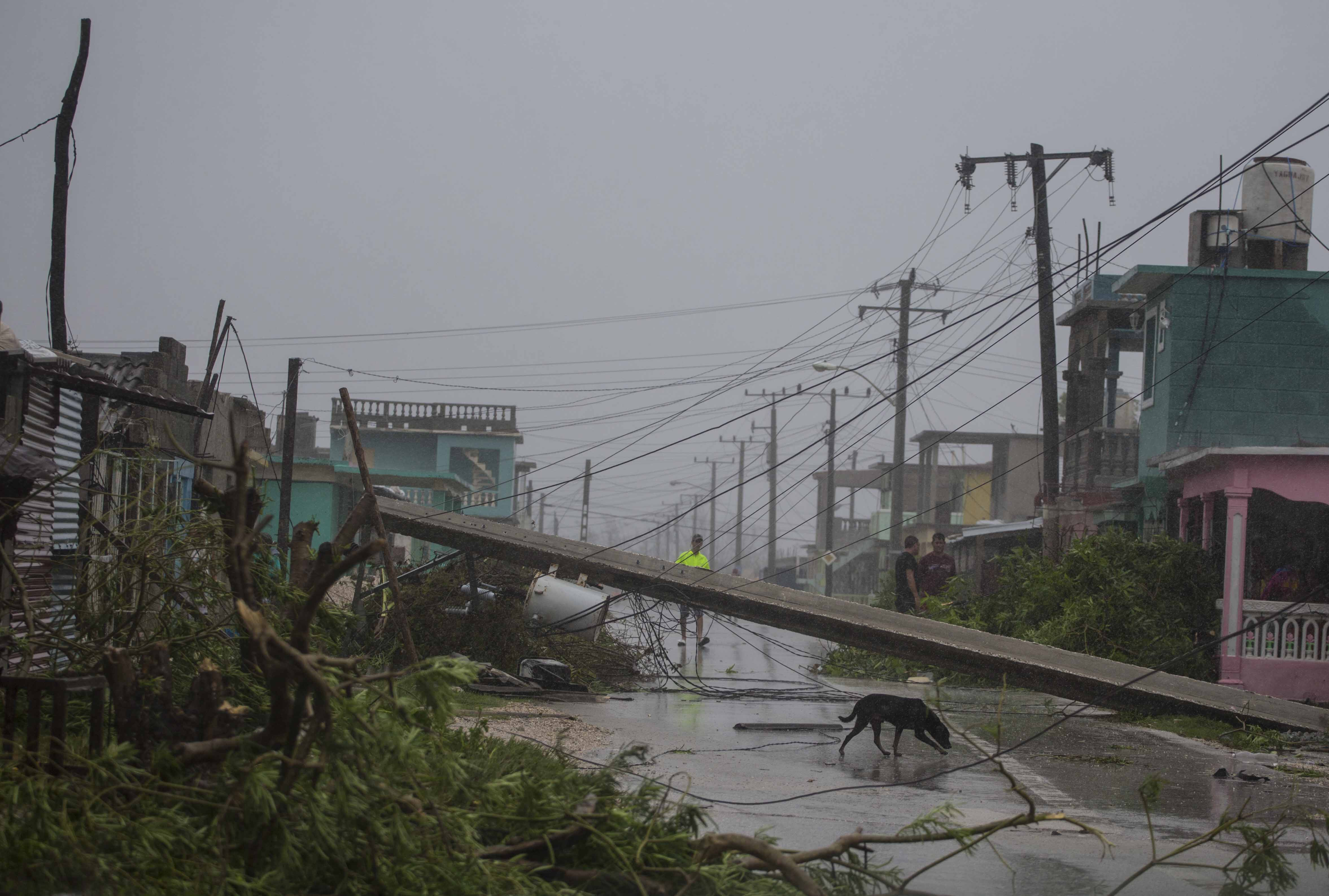 "<div class=""meta image-caption""><div class=""origin-logo origin-image none""><span>none</span></div><span class=""caption-text"">Residents venture out to find downed power lines and trees uprooted by Hurricane Irma, in Caibarien, Cuba, Saturday, Sept. 9, 2017. (Desmond Boylan/AP Photo)</span></div>"