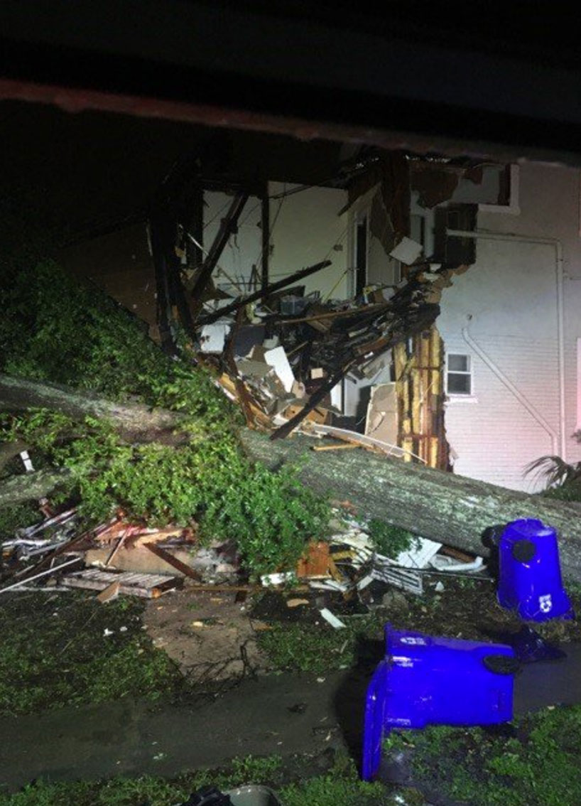 <div class='meta'><div class='origin-logo' data-origin='none'></div><span class='caption-text' data-credit='Lakeland Fire/Twitter'>No injuries were reported when a massive tree fell on a home in Lakeland, Fla. Eight people were displaced.</span></div>