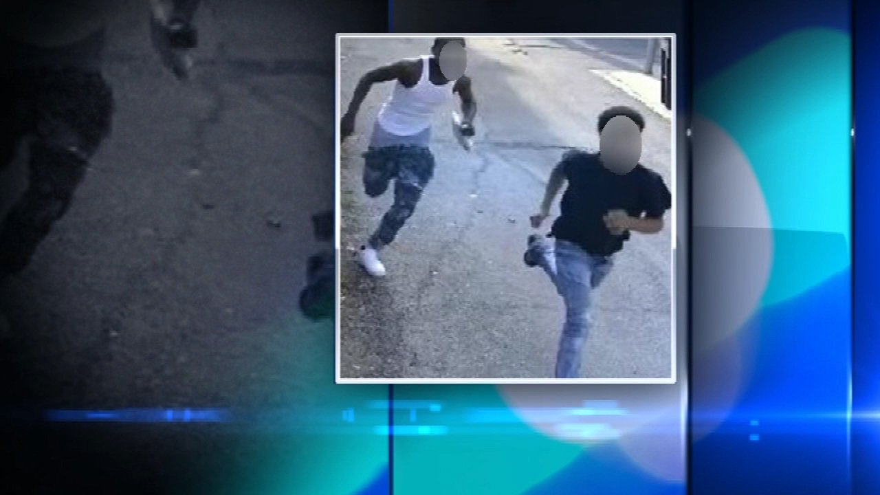 Two teens were charged in the robbery of an 80-year-old woman in Chicago's Lincoln Park neighborhood.