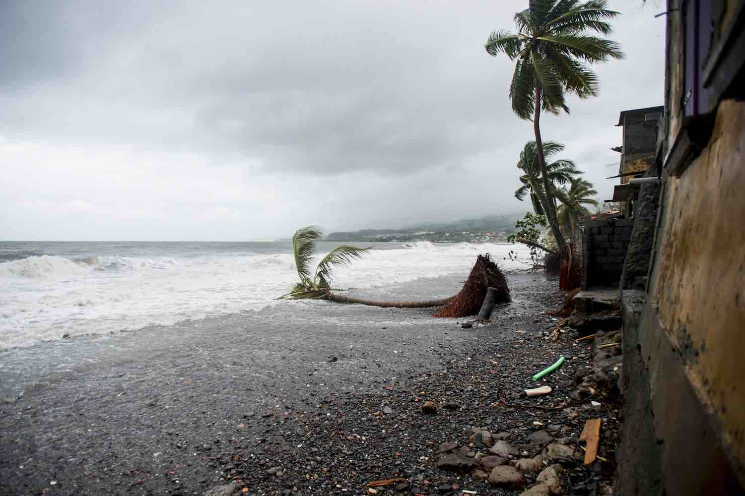 <div class='meta'><div class='origin-logo' data-origin='Creative Content'></div><span class='caption-text' data-credit='LIONEL CHAMOISEAU/AFP/Getty'>A picture shows an uprooted tree on the beach in Saint-Pierre, on the French Caribbean island of Martinique, after it was hit by Hurricane Maria, on September 19, 2017.</span></div>