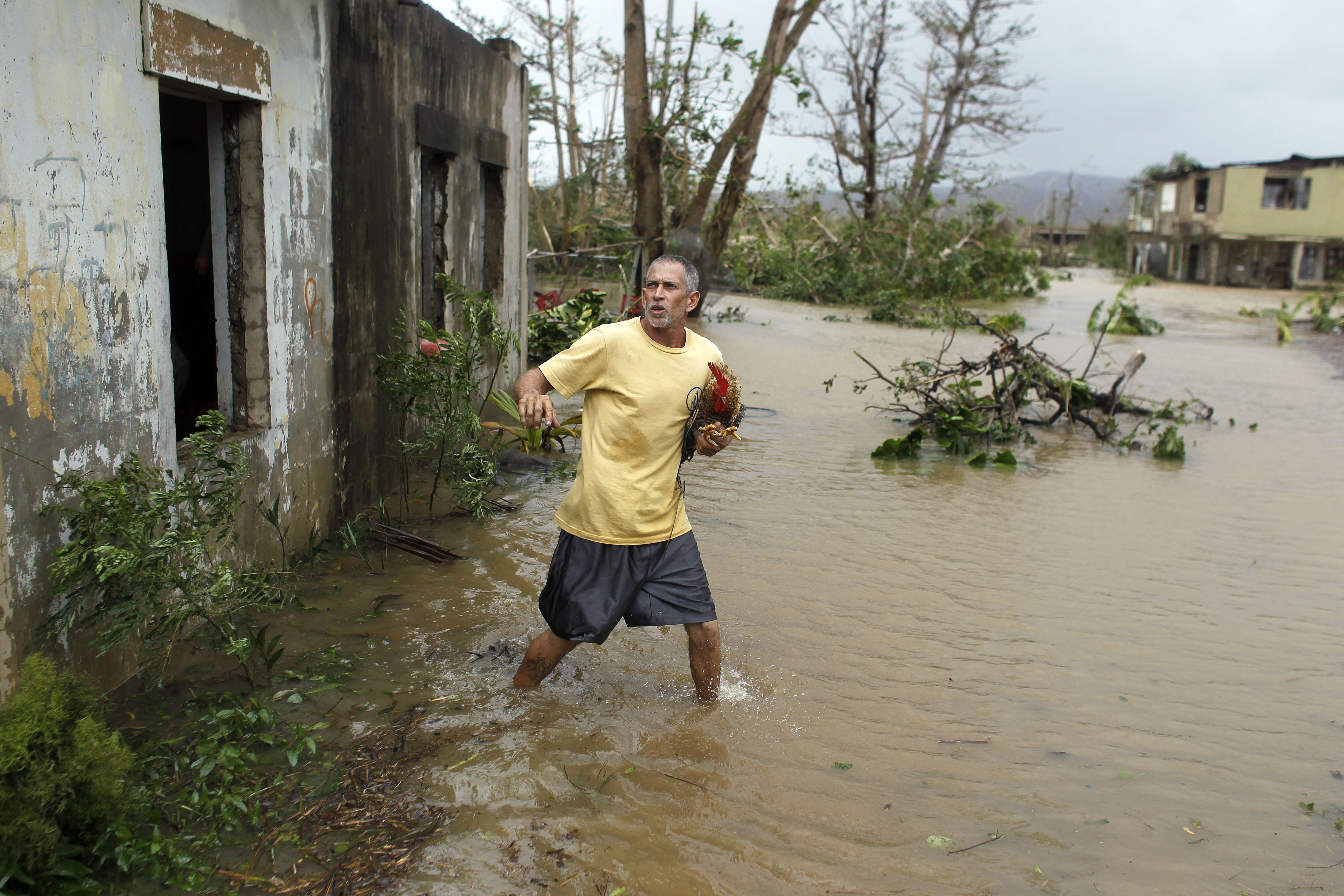 <div class='meta'><div class='origin-logo' data-origin='none'></div><span class='caption-text' data-credit='RICARDO ARDUENGO/AFP/Getty Images'>A man rescues a rooster from his flooded garage as Hurricane Maria hits Puerto Rico in Fajardo, on September 20, 2017.</span></div>