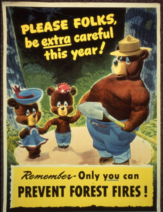 five facts you didn t know about smokey the bear on his 70th