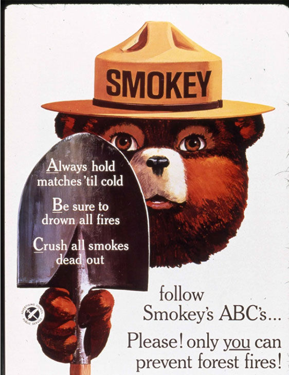 Five facts you didn t know about Smokey the Bear on his 70th birthday  c7e68b205195
