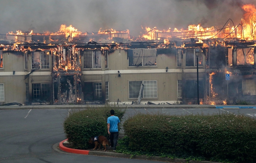 "<div class=""meta image-caption""><div class=""origin-logo origin-image none""><span>none</span></div><span class=""caption-text"">Rudy Habibe, from Puerto Rico, and his service dog Maximus walk toward a burning building at the Hilton Sonoma Wine Country hotel, where he was a guest, in Santa Rosa, Calif. (Jeff Chiu/AP Photo)</span></div>"