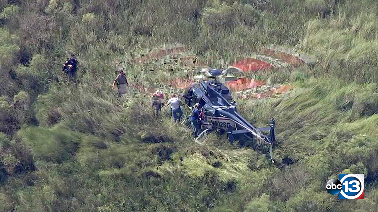 Suspect tackled in cow pasture after high speed chase