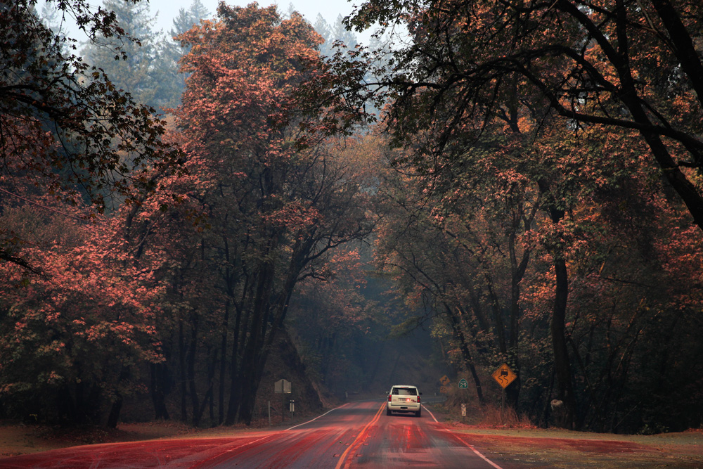 <div class='meta'><div class='origin-logo' data-origin='none'></div><span class='caption-text' data-credit='Jae C. Hong/AP Photo'>An SUV passes trees covered in fire retardant as wildfires continue to burn Thursday, Oct. 12, 2017, near Calistoga, Calif.</span></div>