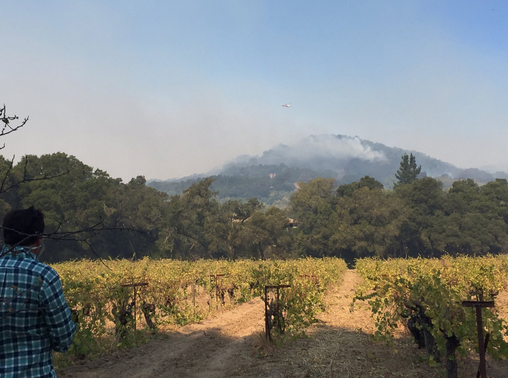 <div class='meta'><div class='origin-logo' data-origin='none'></div><span class='caption-text' data-credit='Katie Utehs/KGO-TV'>&#34;Active fire northeast and north of #Sonoma shots taken from Bartholomew winery&#34;</span></div>