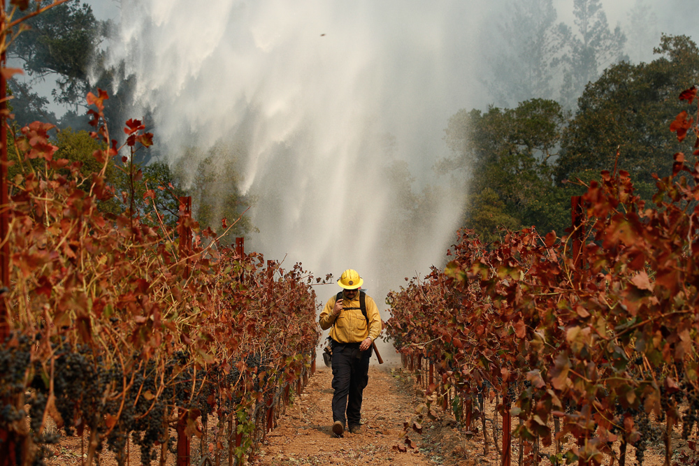 <div class='meta'><div class='origin-logo' data-origin='none'></div><span class='caption-text' data-credit='Jae C. Hong/AP Photo'>Firefighter Chris Oliver walks between grape vines as a helicopter drops water over a wildfire burning near a winery Saturday, Oct. 14, 2017, in Santa Rosa, Calif.</span></div>