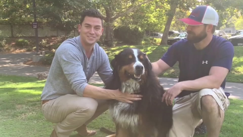 Family Reunited With Dog After Devastating California Wildfire
