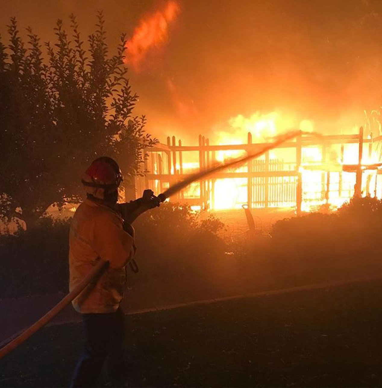 <div class='meta'><div class='origin-logo' data-origin='none'></div><span class='caption-text' data-credit='windsor_fire/Instagram'>Windsor Fire posted this action shot and thanked the community for their support.</span></div>