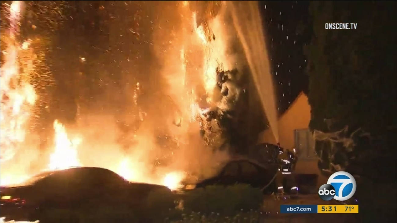Palm trees and a vehicle are on fire in front of a North Hollywood home in a series of suspicious fires that erupted overnight on Thursday, Oct. 19, 2017.