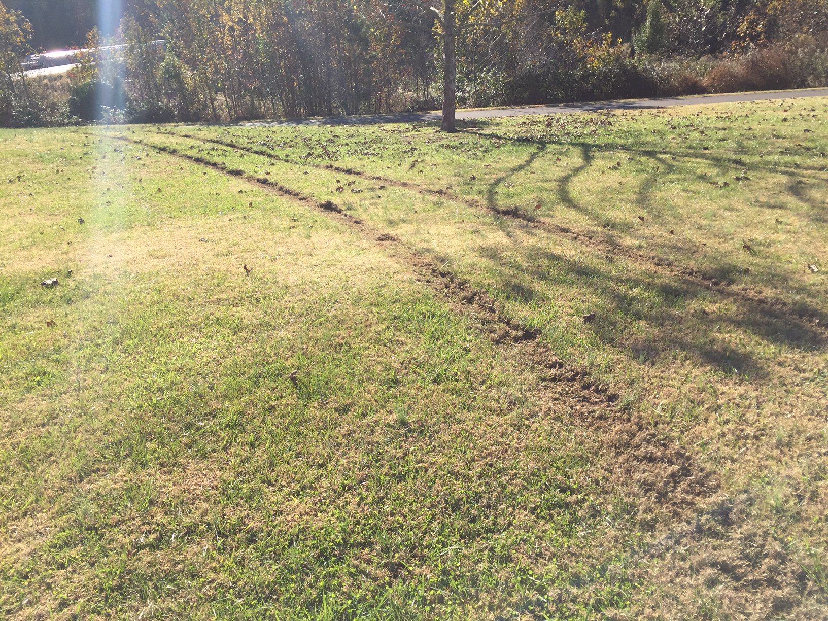 "<div class=""meta image-caption""><div class=""origin-logo origin-image none""><span>none</span></div><span class=""caption-text"">Damage at E. Carroll Joyner Park (image courtesy Town of Wake Forest)</span></div>"