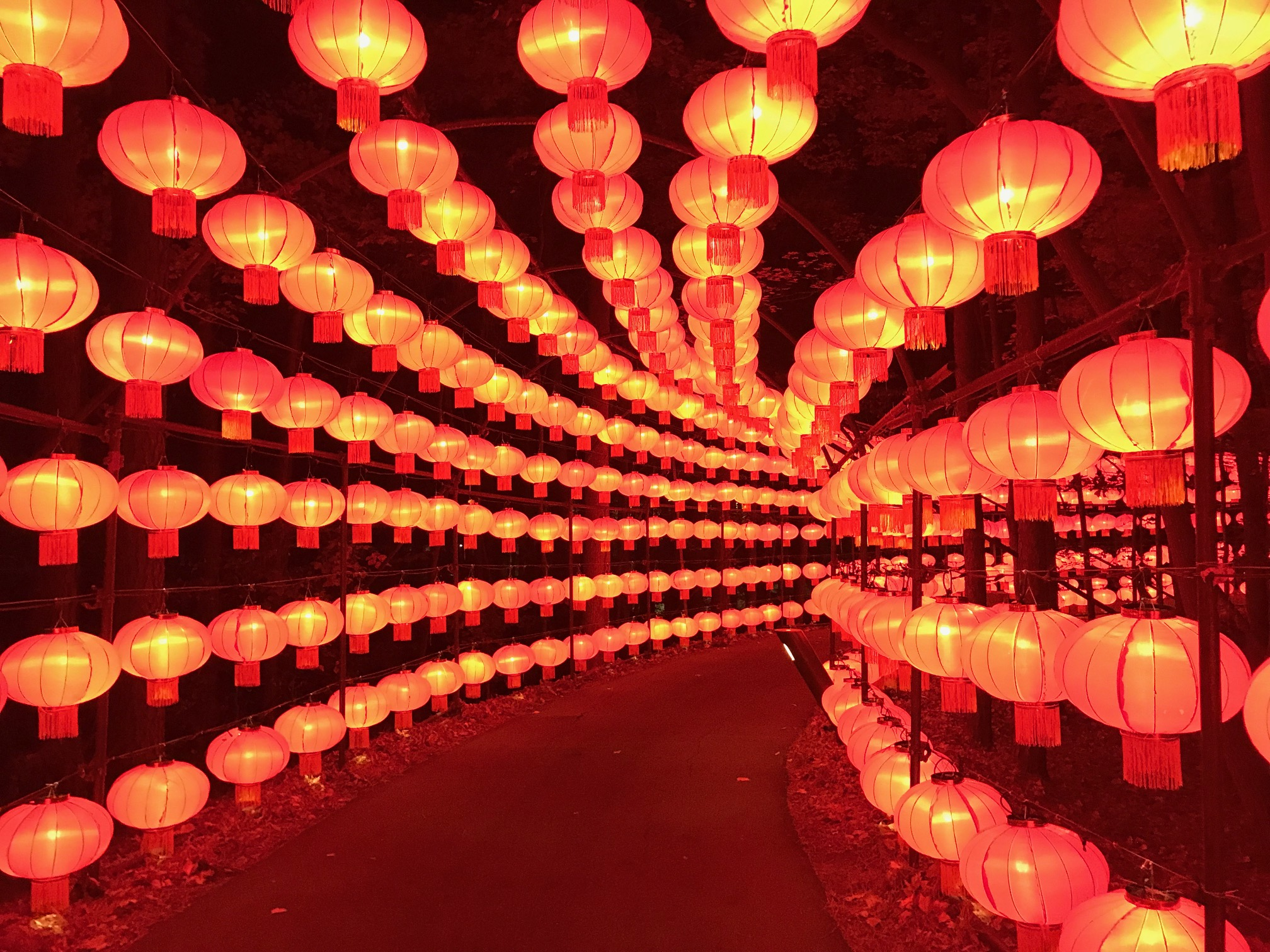 lantern festival_NC Chinese Lantern Festival lights up Cary | abc11.com