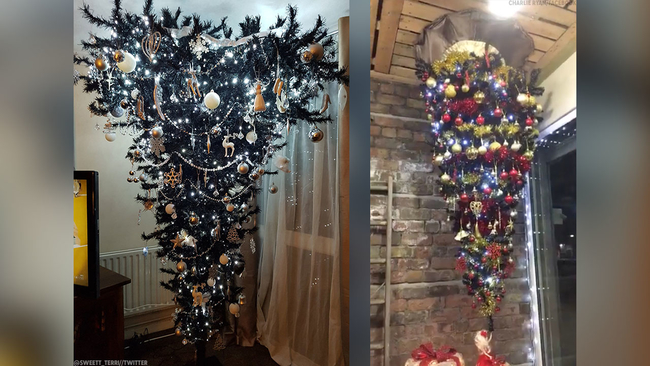 upside down christmas trees are all the rage for 2017 abc7newscom - Upside Down Christmas Tree Decorated
