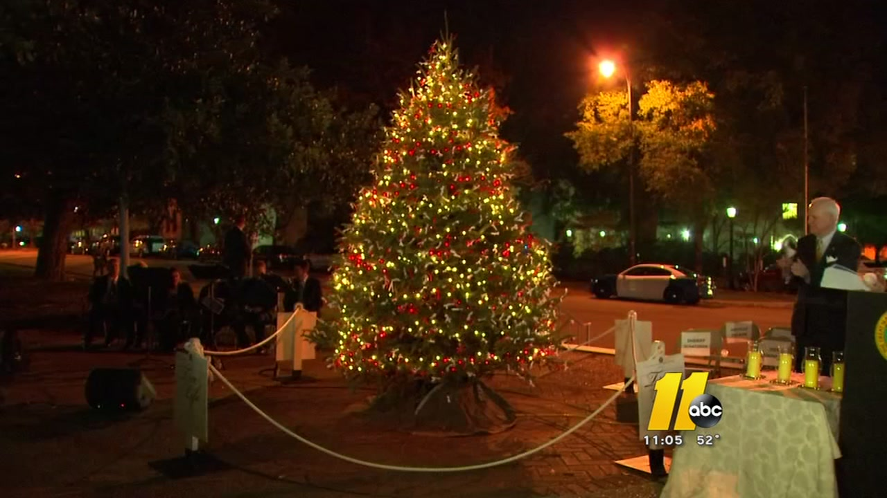 nc tree of life shines light on deadly senseless crashes