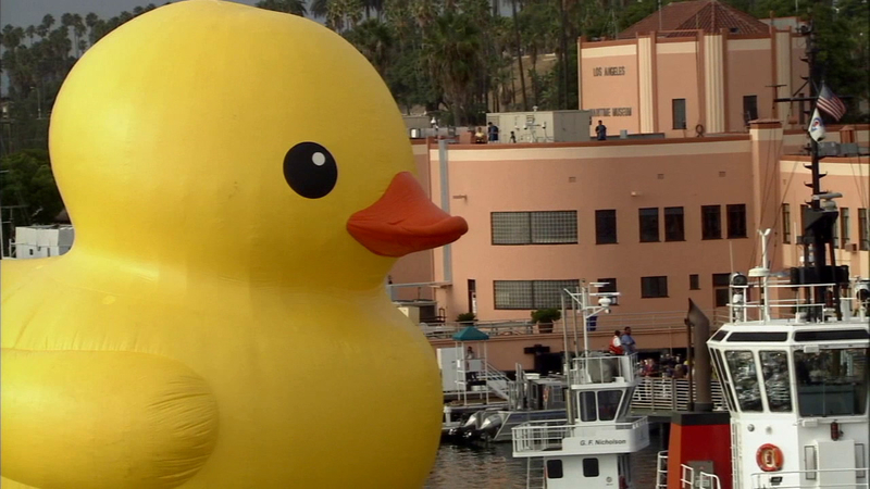 Giant rubber duck wows spectators at Port of LA for Festival of Tall ...