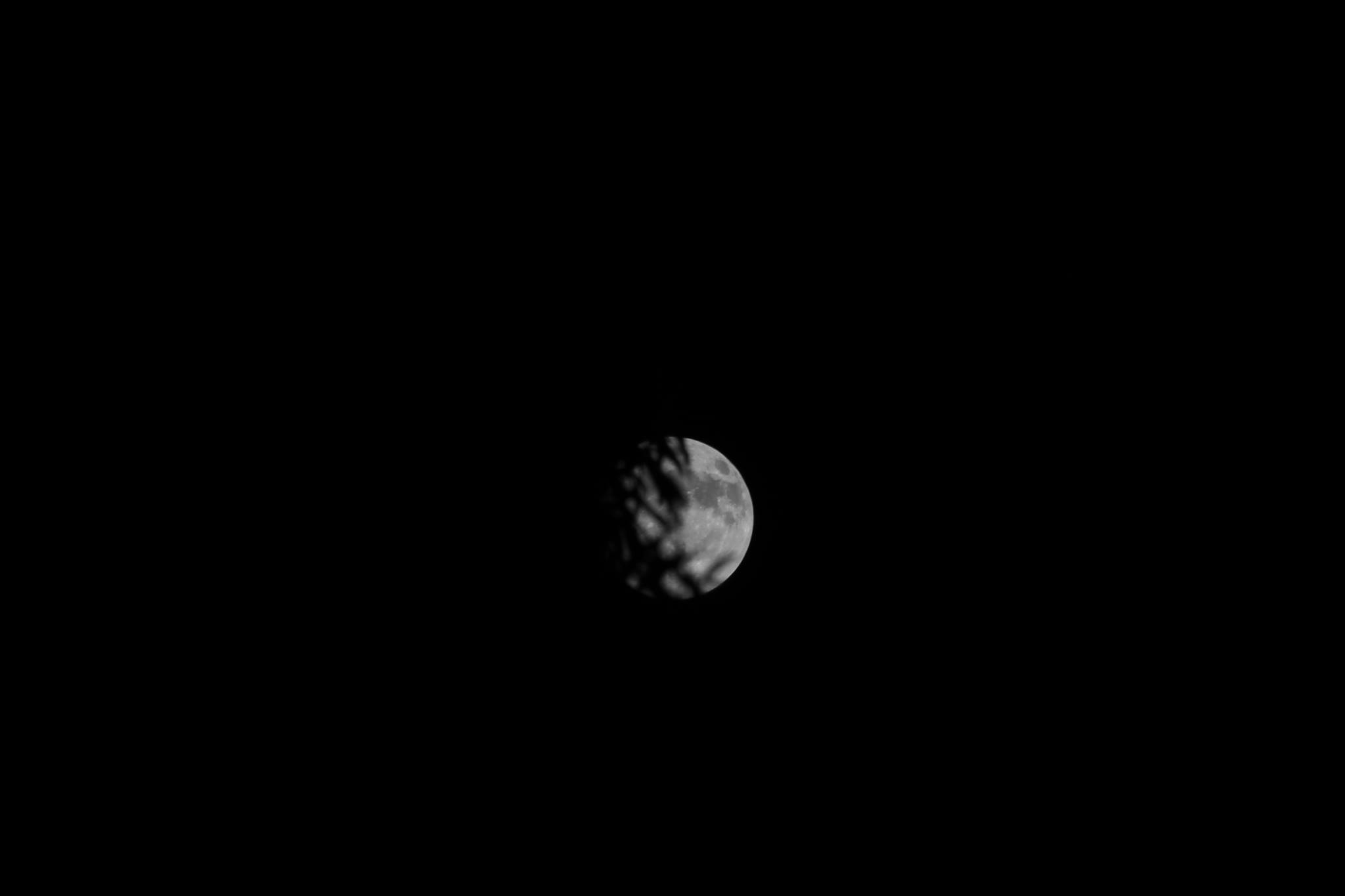 """<div class=""""meta image-caption""""><div class=""""origin-logo origin-image none""""><span>none</span></div><span class=""""caption-text"""">The first and only supermoon of 2017. (Credit: Chris Seitz/Facebook)</span></div>"""