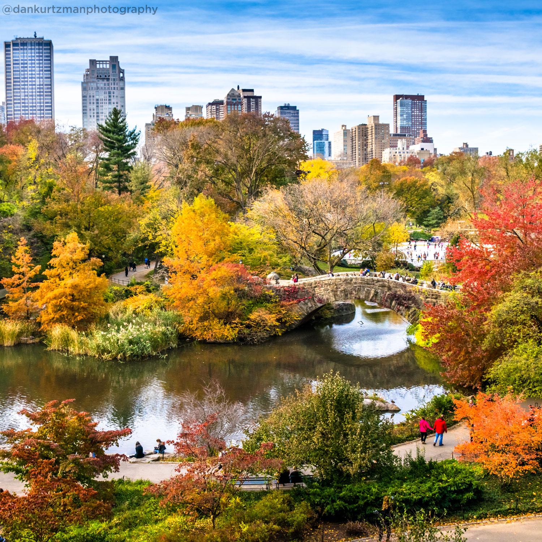 <div class='meta'><div class='origin-logo' data-origin='none'></div><span class='caption-text' data-credit='Dan Kurtzman (@dankurtzmanphotography)'>Central Park in the fall</span></div>