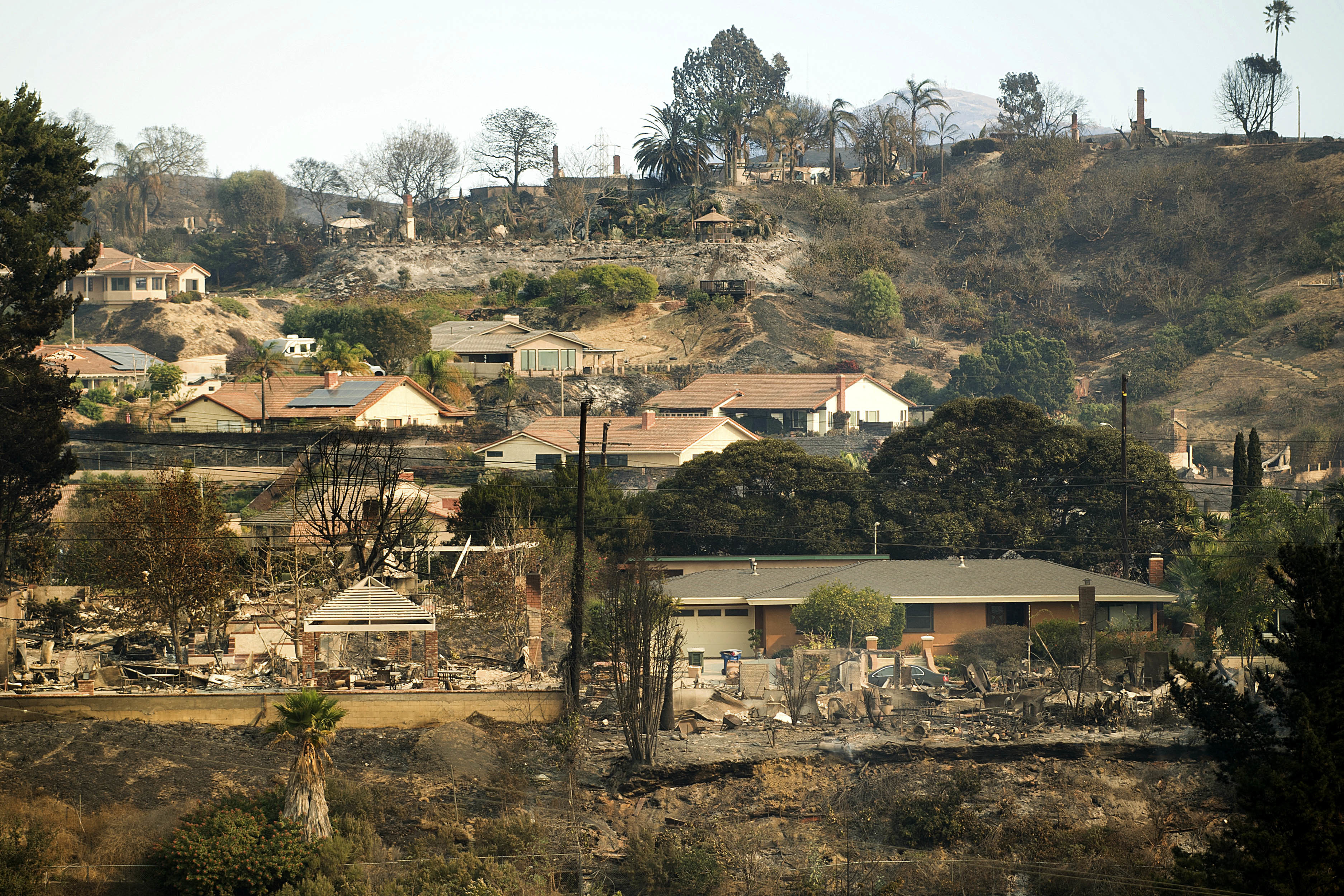 <div class='meta'><div class='origin-logo' data-origin='none'></div><span class='caption-text' data-credit='Noah Berger/AP Photo'>Homes scorched by a wildfire line a hillside in Ventura, Calif., on Wednesday, Dec. 6, 2017.</span></div>