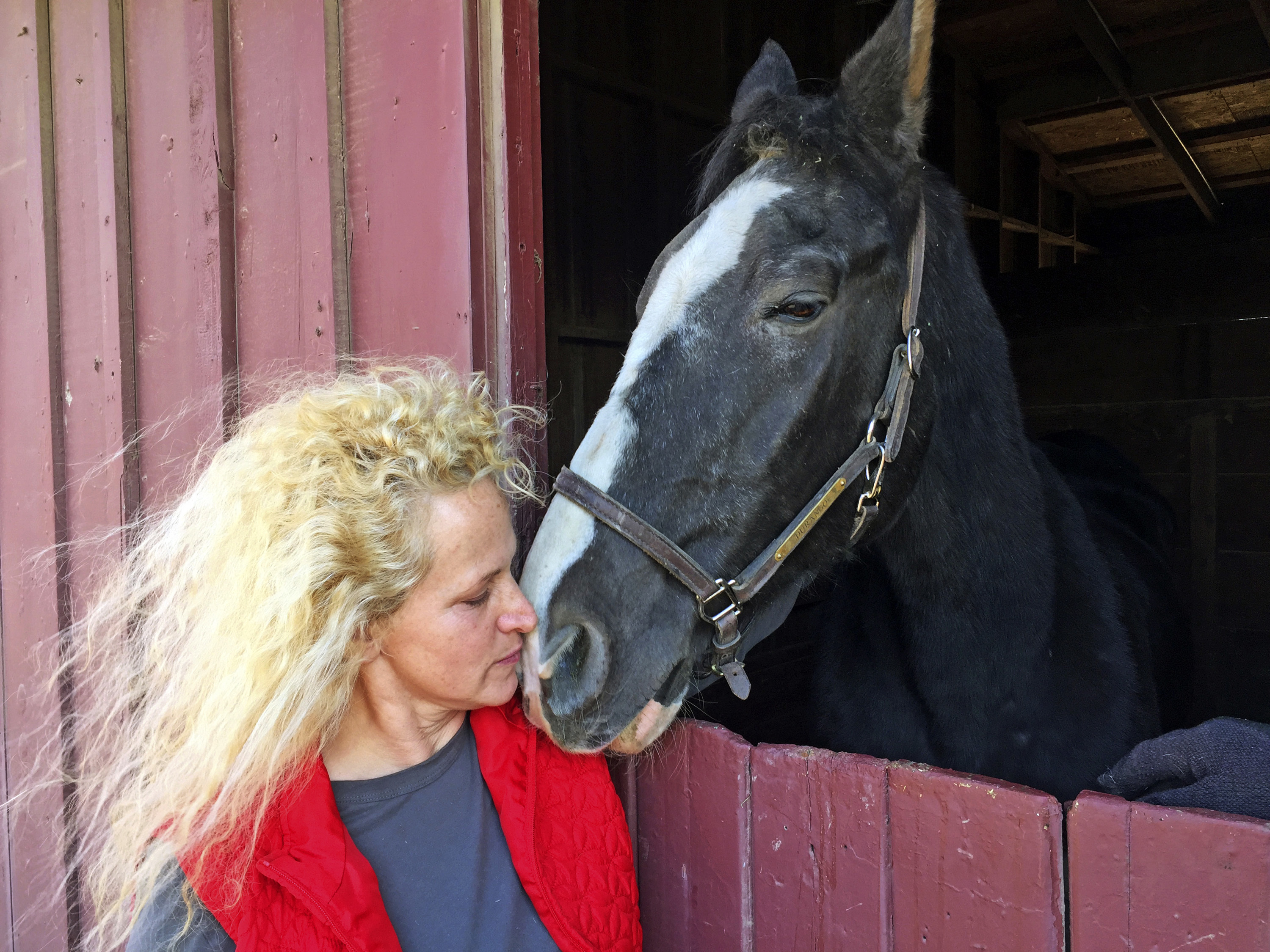"<div class=""meta image-caption""><div class=""origin-logo origin-image none""><span>none</span></div><span class=""caption-text"">Wendy Frank poses with one of her horses at the Ventura County Fairgrounds evacuation center in Ventura, Calif., Thursday, Dec. 7, 2017. (Amanda Lee Myers/AP Photo)</span></div>"