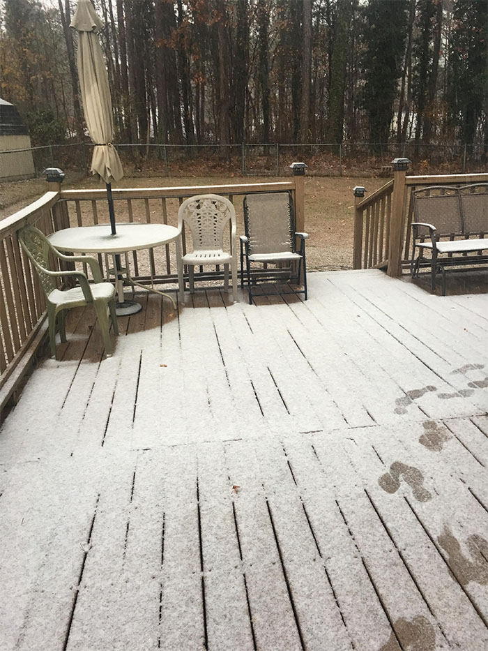 "<div class=""meta image-caption""><div class=""origin-logo origin-image none""><span>none</span></div><span class=""caption-text"">Snow in Durham. (ABC11 Eyewitness)</span></div>"