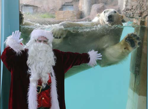 "<div class=""meta image-caption""><div class=""origin-logo origin-image none""><span>none</span></div><span class=""caption-text"">A man dressed in a Santa Claus costume poses for photographers with a polar bear named ""Raspoutine"", at the animal exhibition park Marineland in Antibes, southern France (AP Photo/Lionel Cironneau)</span></div>"
