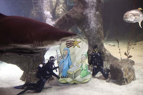 "<div class=""meta image-caption""><div class=""origin-logo origin-image none""><span>none</span></div><span class=""caption-text"">A zoo worker in a diving suit poses next to a Christmas Nativity scene that was mounted at the bottom of the zoo aquarium as a shark swims by in Madrid, Spain. (AP Photo/Andres Kudacki)</span></div>"