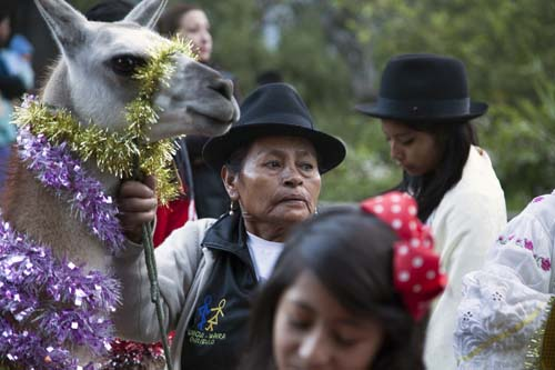 "<div class=""meta image-caption""><div class=""origin-logo origin-image none""><span>none</span></div><span class=""caption-text"">A woman from the Chilibulo community holds her llama on a leash, which she decorated with tinsel, during a parade on the seventh day of the ""Novena"" in Quito, Ecuador. (AP Photo/Ana Maria Buitron)</span></div>"