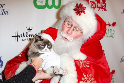 "<div class=""meta image-caption""><div class=""origin-logo origin-image none""><span>none</span></div><span class=""caption-text"">Grumpy Cat arrives at the 84th Annual Hollywood Christmas Parade in Los Angeles. (Rich Fury/Invision/AP)</span></div>"