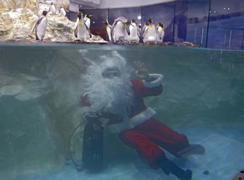 "<div class=""meta image-caption""><div class=""origin-logo origin-image none""><span>none</span></div><span class=""caption-text"">A man dressed as Santa Claus poses for photographers with king penguins at the Marineland animal exhibition park in Antibes, southeastern France. (AP Photo/Lionel Cironneau)</span></div>"