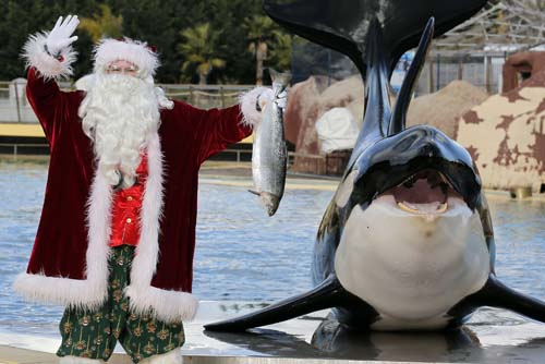 "<div class=""meta image-caption""><div class=""origin-logo origin-image none""><span>none</span></div><span class=""caption-text"">A man dressed in a Santa Claus costume poses for photographers with a killer whale named ""Valentin"" , at the animal exhibition park Marineland in Antibes, southern France. (AP Photo/Lionel Cironneau)</span></div>"