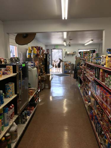 "<div class=""meta image-caption""><div class=""origin-logo origin-image none""><span>none</span></div><span class=""caption-text"">A store near Fort Collins, Colorado got a surprise visit from a few locals last week. (Lori Jones)</span></div>"