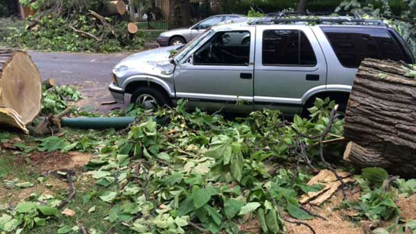 "<div class=""meta image-caption""><div class=""origin-logo origin-image ""><span></span></div><span class=""caption-text"">Fallen trees lined streets in Chicago's Andersonville neighborhood the morning affter a day of severe weather. (WLS Photo/ Victoria Blount)</span></div>"