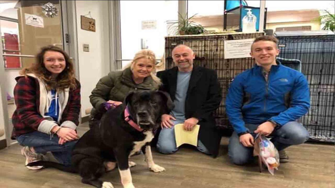 Polina, KC Pet Project's longest term resident, officially has a family for Christmas