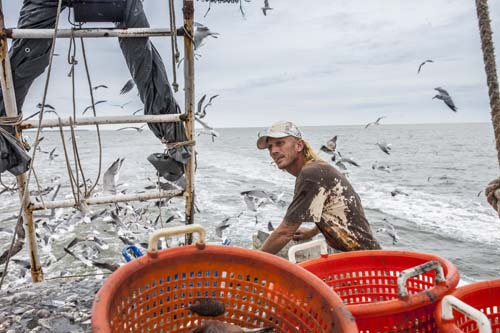 <div class='meta'><div class='origin-logo' data-origin='none'></div><span class='caption-text' data-credit='Shutterstock'>2.	Fisherman and related fishing workers</span></div>