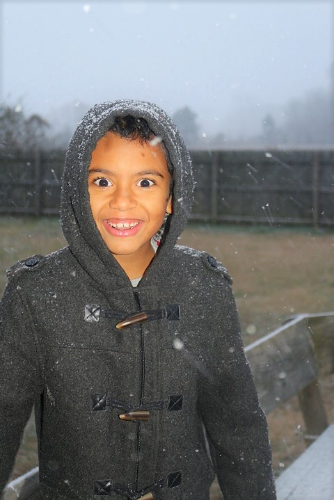 "<div class=""meta image-caption""><div class=""origin-logo origin-image none""><span>none</span></div><span class=""caption-text"">The beginning of snowfall in Raeford. (Shanetta Smith - ABC11 Eyewitness)</span></div>"