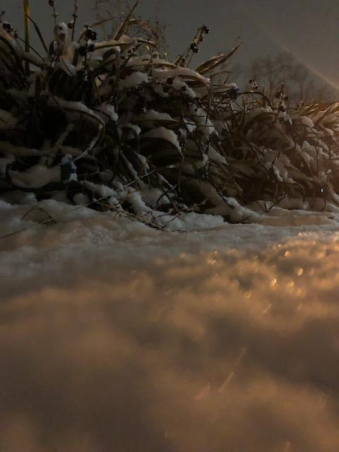 "<div class=""meta image-caption""><div class=""origin-logo origin-image none""><span>none</span></div><span class=""caption-text"">Snow in Clayton (Credit: Robyn)</span></div>"