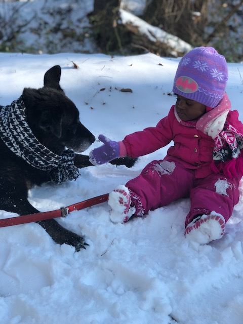 "<div class=""meta image-caption""><div class=""origin-logo origin-image wtvd""><span>WTVD</span></div><span class=""caption-text"">Londyn Webb and her best friend Pookie enjoying snow together in Goldsboro. (Joy Coley- ABC11 Eyewitness)</span></div>"
