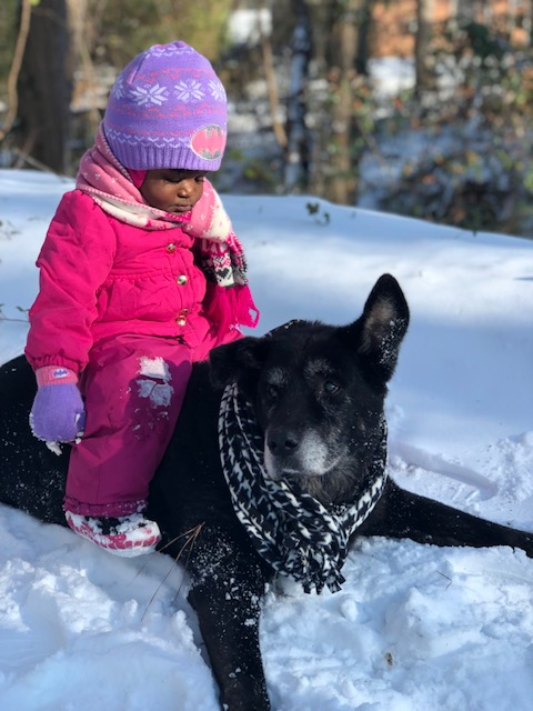 "<div class=""meta image-caption""><div class=""origin-logo origin-image none""><span>none</span></div><span class=""caption-text"">Londyn Webb and Pookie enjoying snow. (Joy Coley - ABC11 Eyewitness)</span></div>"