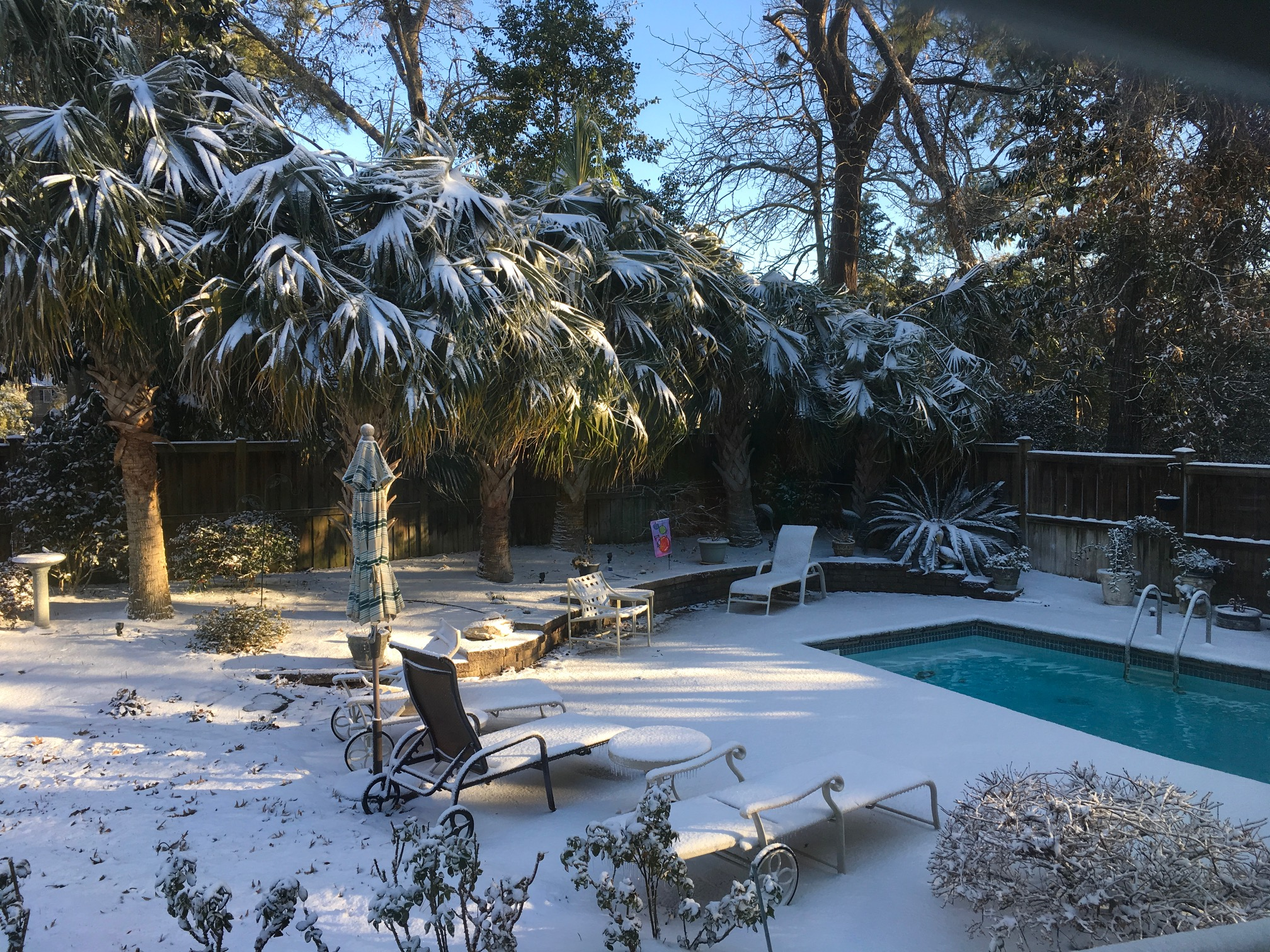 "<div class=""meta image-caption""><div class=""origin-logo origin-image none""><span>none</span></div><span class=""caption-text"">Snow in Wilmington. (Linda Thorburn - ABC11 Eyewitness)</span></div>"