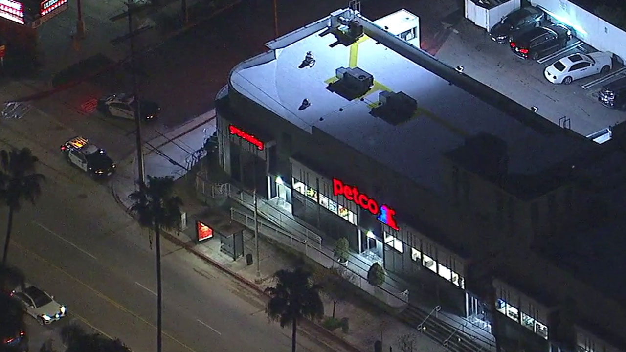 Shots were fired during an incident at a Petco store in Studio City, police said.