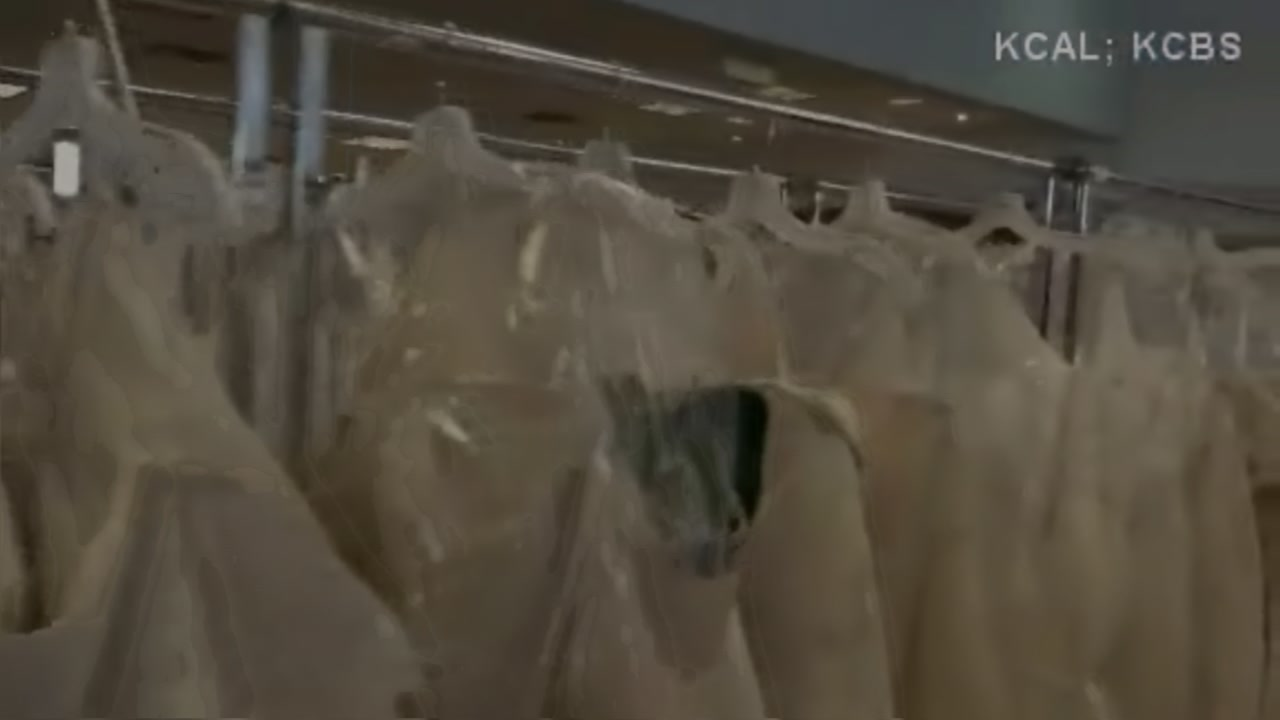 Bankrupt bridal chain Alfred Angelo holds liquidation sale | abc13.com