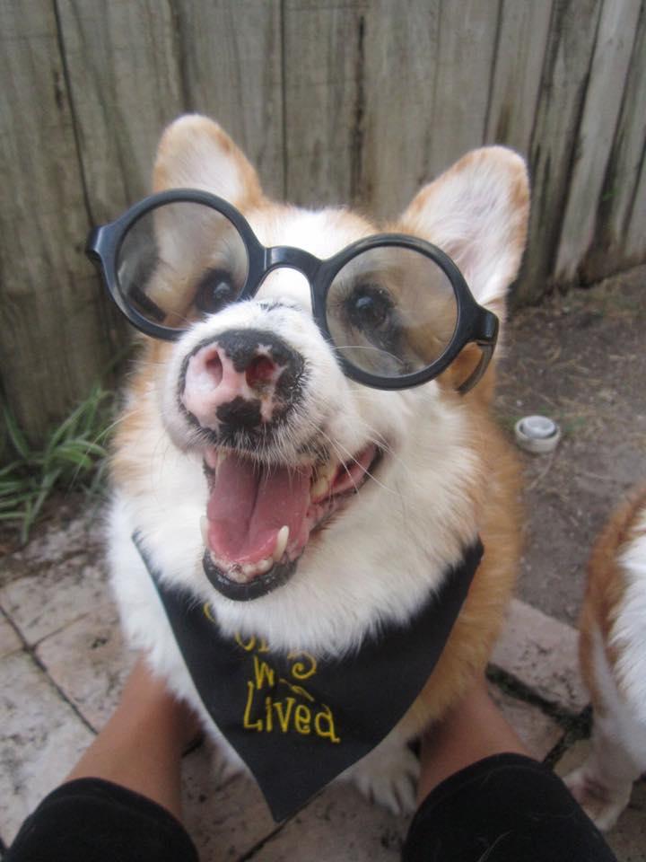 <div class='meta'><div class='origin-logo' data-origin='none'></div><span class='caption-text' data-credit=''></span></div>